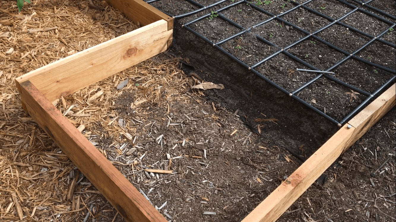 Expanded Raised Garden Bed 3ft