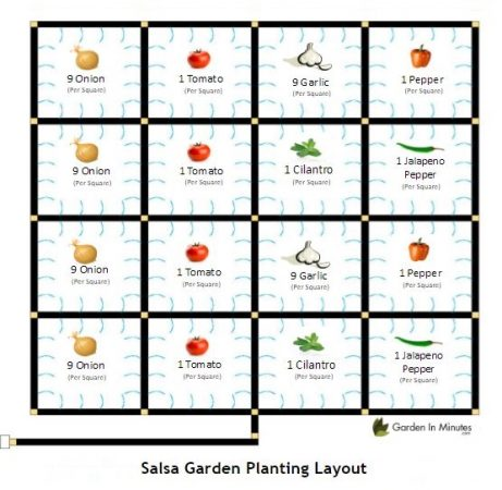 Salsa Garden Sample Planting Layout for a 4x4 Planting Area
