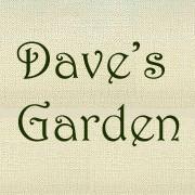 DavesGarden