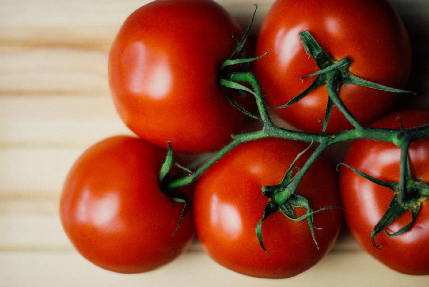 square food gardening tomatoes