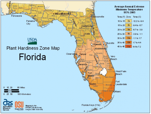 Planning a Garden: Find your Florida growing zone