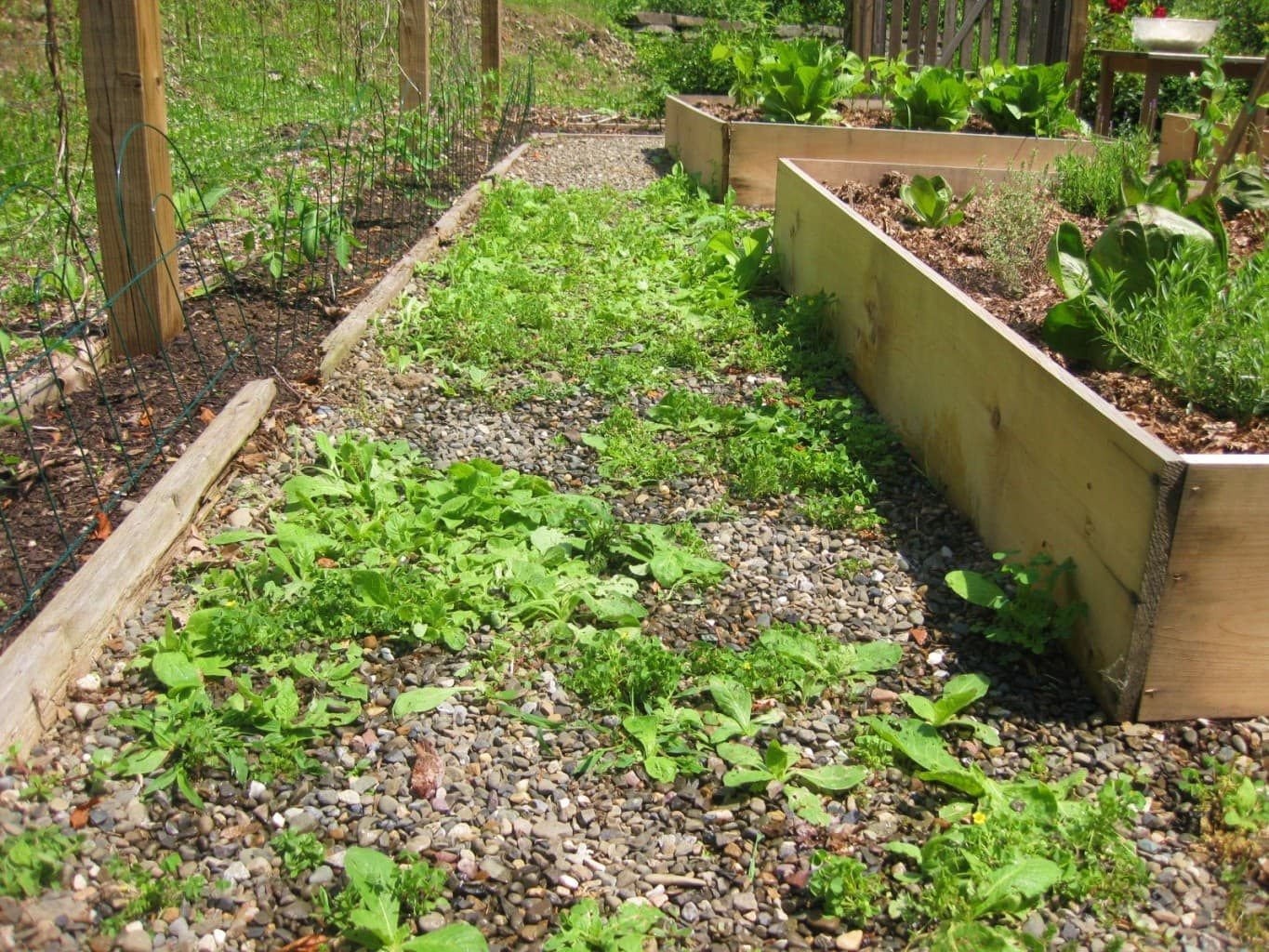 Winterize Your Garden To Prepare It For Spring