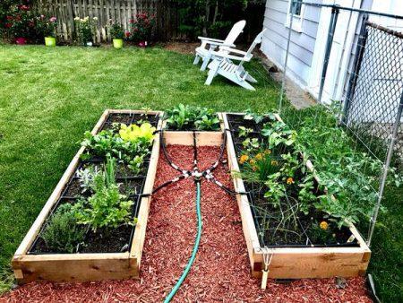 U Shaped Raised Garden Setup