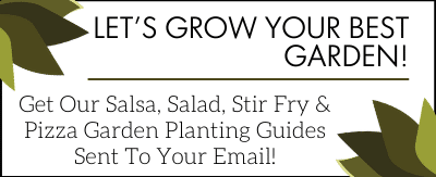 Copy of Let's Grow Your Best Garden! (2)
