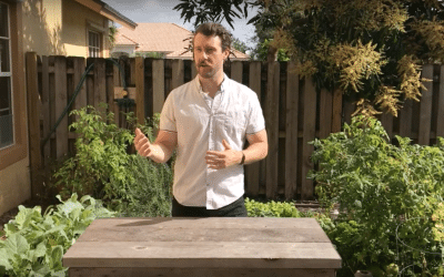 Fast Growing & Cold Tolerant Vegetables – Easy Growing Ep. #21
