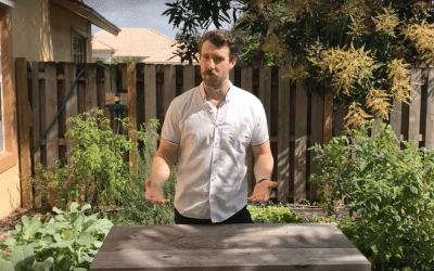 How to Ensure Your Rain Barrel Provides Enough Water to Your Garden – Easy Growing Ep. #23