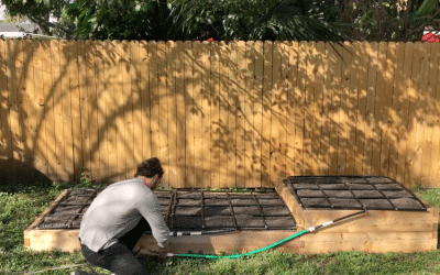 4×12 Tiered Raised Garden w/ Irrigation Built In 5 Min – Easy Growing Ep. 25