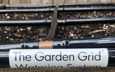 The Garden Grid™ Setup Process – How Does It Work?